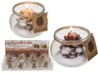 Candle, pinecone,