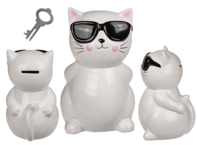 Savings bank with lock, Cat with sunglasses,