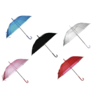 Umbrella, Transparent I,